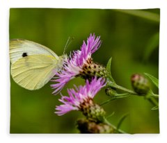 Beautiful Butterfly On Pink Thistle Fleece Blanket