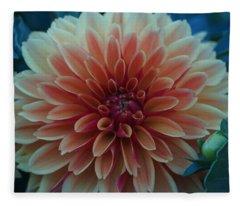 Beautiful Dahlia 3 Fleece Blanket
