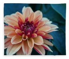 Beautiful Dahlia 4 Fleece Blanket