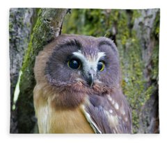 Beautiful Eyes Of A Saw-whet Owl Chick Fleece Blanket