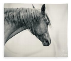 Beautiful Lonely White Horse II Fleece Blanket