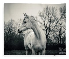 Beautiful Lonely White Horse IIi Fleece Blanket
