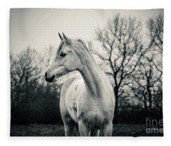 Beautiful Lonely White Horse IIi Fleece Blanket