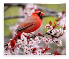 Beautiful Northern Cardinal Fleece Blanket