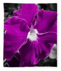 Beautiful Purple Fleece Blanket