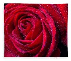 Beautiful Red Rose With Dew Fleece Blanket