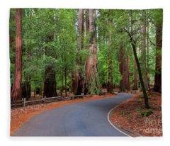 Beautiful Redwood Grove Fleece Blanket