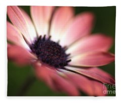 Beautiful Rich African Daisy Zion Red Flower Fleece Blanket