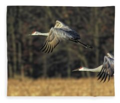 Beauty In Motion Fleece Blanket