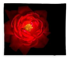 Fleece Blanket featuring the photograph Beauty Shining Through The Darkness by Allin Sorenson