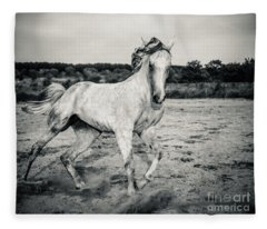 Beautyful White Horse Galloping Black And White Photography Fleece Blanket