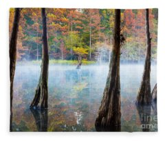 Beavers Bend Cypress Grove Fleece Blanket