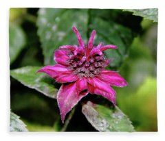 Bee Balm Beauty Fleece Blanket