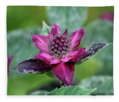 Bee Balm Exuberance Fleece Blanket