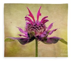 Bee Balm With A Vintage Touch Fleece Blanket