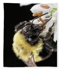 Bee Macro 1 Fleece Blanket