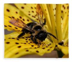 Bee On A Lily Fleece Blanket