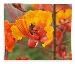Bee Pollinating Bird Of Paradise Fleece Blanket