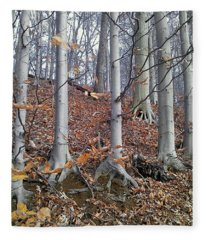 Beech Trees Fleece Blanket