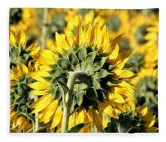 Behind A Sunflower Field Fleece Blanket