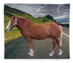 Belgian Horse Fleece Blanket