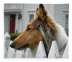 Bellingham Collie Fleece Blanket