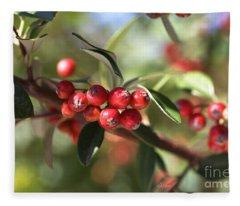 Berry Delight Fleece Blanket