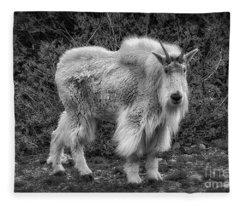 Big Billy Fleece Blanket