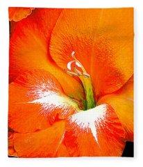 Big Glad In Bright Orange Fleece Blanket