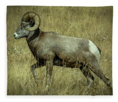 Big Horn Fleece Blanket