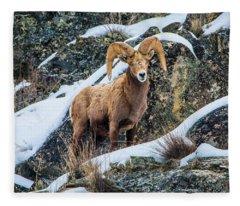 Bighorn Ram 3 Fleece Blanket