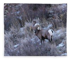 Bighorn8 Fleece Blanket