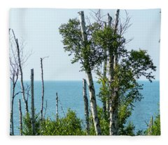Birch And Lake Superior Fleece Blanket