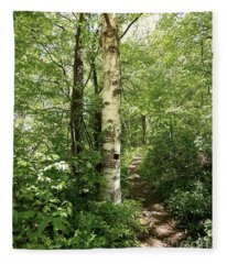 Birch Tree Hiking Trail Fleece Blanket