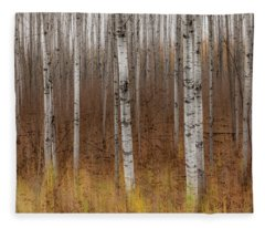 Birch Trees Abstract #2 Fleece Blanket