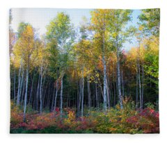Birch Trees Turn To Gold Fleece Blanket