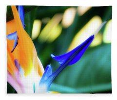 Bird Of Paradise Flower Fleece Blanket
