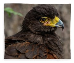 Bird Of Prey Fleece Blanket