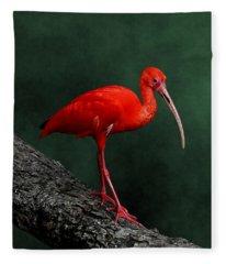 Bird On A Catwalk Fleece Blanket