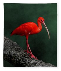 Bird On A Catwalk Fleece Blanket