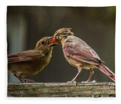 Bird Parenting Fleece Blanket