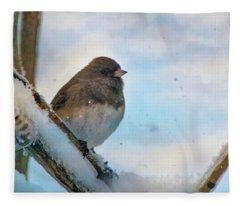 Birdie Its Cold Outside Fleece Blanket