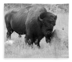 Bison And Buffalo Fleece Blanket