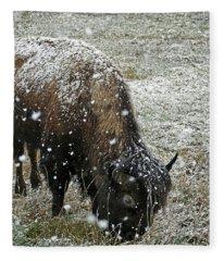 Bison Grazing In Snow Fleece Blanket