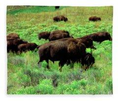 Bison2 Fleece Blanket