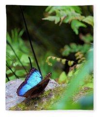 Black And Blue Butterfly Fleece Blanket