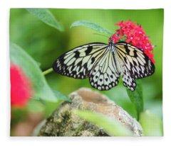 Black And White Butterfly Fleece Blanket