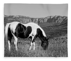 Black And White Horse Grazing In Wyoming In Black And White  Fleece Blanket