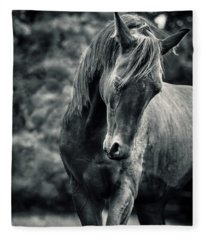 Black And White Portrait Of Horse Fleece Blanket