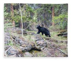Black Bear At Johnston Canyon Fleece Blanket